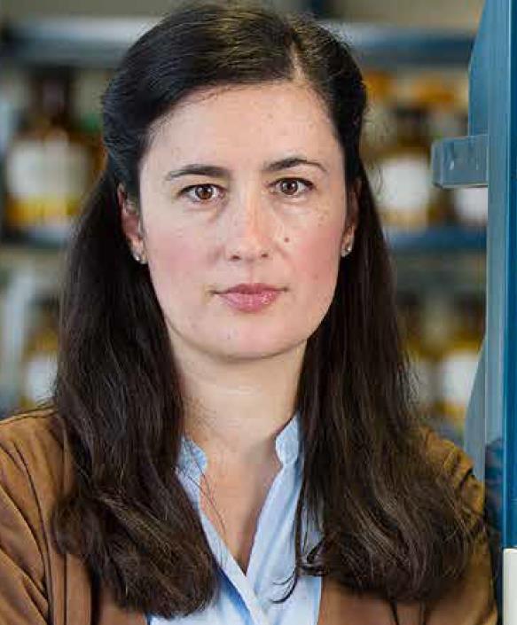 Kristina Friedland